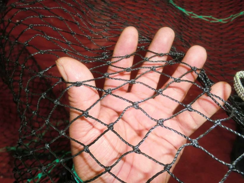 boomswim netting
